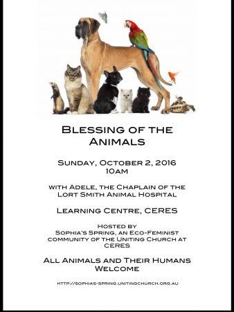 animal-blessing-flyer
